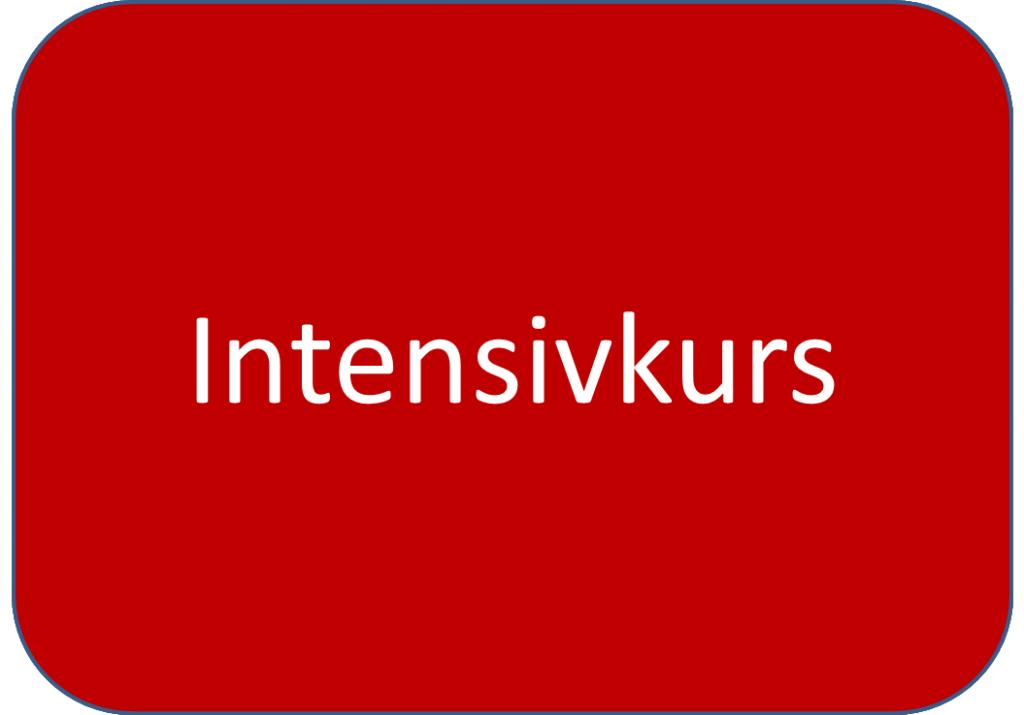 Intensivkurs